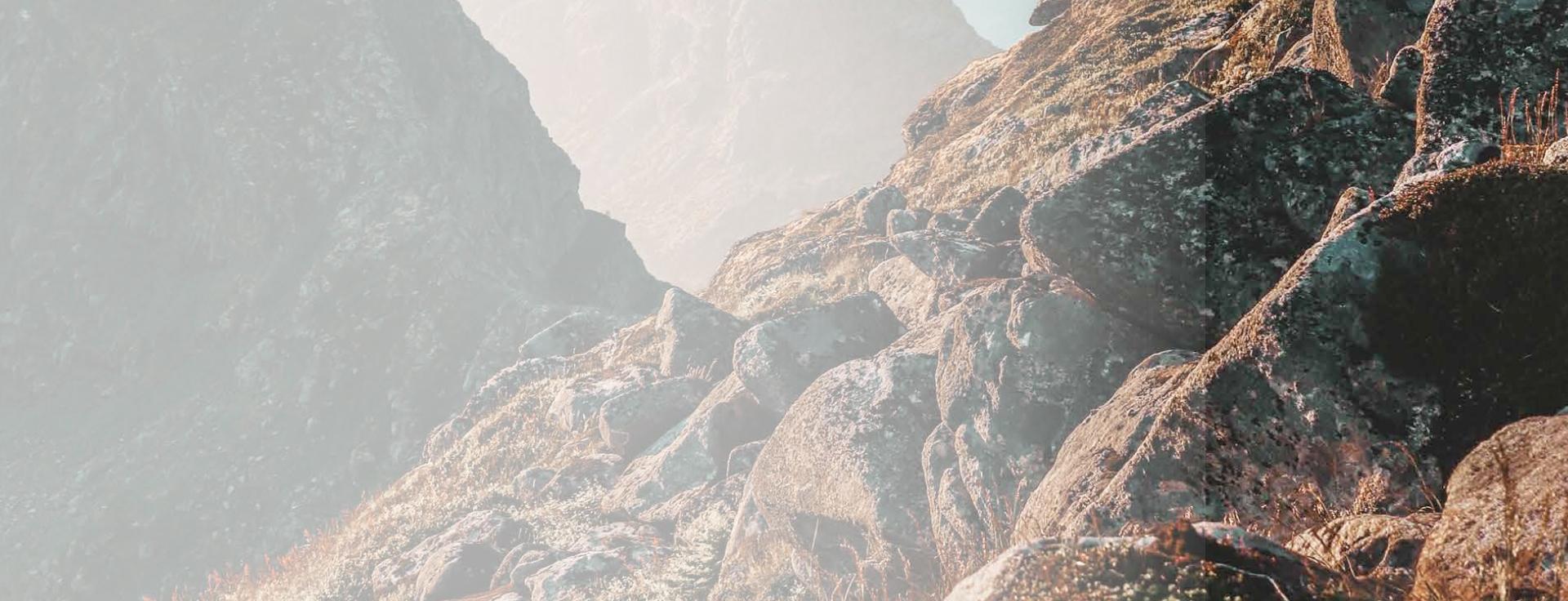 banner-1_img